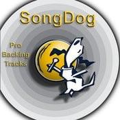 Karaoke Hits: The King, Vol.3 Songs