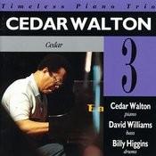 Cedar Songs