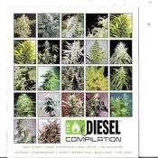 Diesel Compilation: Sickbay Records Songs