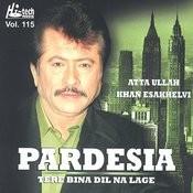 Nittati — pardesia tere bina mp3 free download.