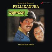 Manninchamma Song