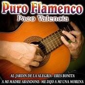 Puro Flamenco Songs