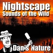 Nightscape - The Sounds Of The Wild (Nature Sounds) Songs