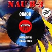 Destroyval Song