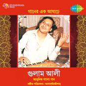 Ghulam Ali - Geener Ek Aashare Songs