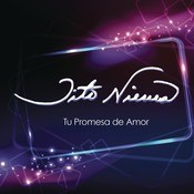 Tus Promesas De Amor  Song