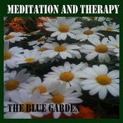 Meditation And Therapy Songs