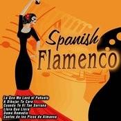 Spanish Flamenco Songs