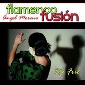 Flamenco Fusión. Rio Frio Songs