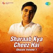 Shraab Ghazals Kya Chhez Hai 1 Songs