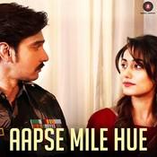 Aapse Mile Hue Songs