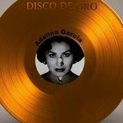 Disco De Oro: Adelina Garcia Songs