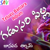 Gadusari Pilla Songs