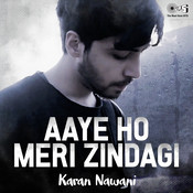 Aaye Ho Meri Zindagi Mein Cover by Karan Nawani Song