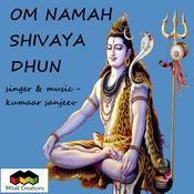 Om namah shivay dhun mp3 download