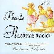 Baile Flamenco Vol. 2 Songs