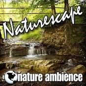 Naturescape (Nature Sounds) Songs