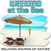 Restful Seaside And Steady Waves Promote Deep Sleep Song