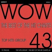 The Best Of The Hit Charts, Vol. 43 Songs