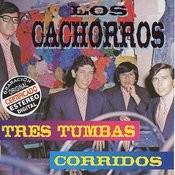 Tres Tumbas Corridos Songs