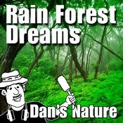 Rain Forest Dreams (Nature Sound With Music) Songs
