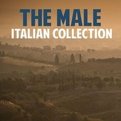 The Male Italian Collection Songs