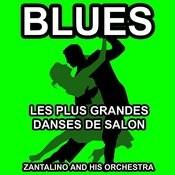 Les Plus Grandes Danses De Salon: Blues Songs