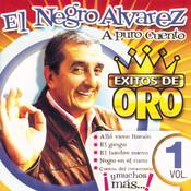 Exitos De Oro Vol. 1 Songs