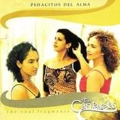 Pedacitos Del Alma Songs