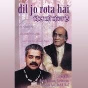 Dil Jo Rota Hai Songs