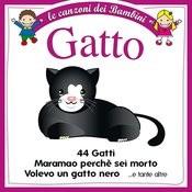 Gatto Songs