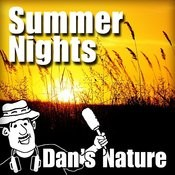 Summer Nights (Nature Sounds) Songs