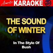 The Sound Of Winter (In The Style Of Bush) [Karaoke Version] Song