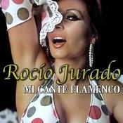 Mi Cante Flamenco Songs