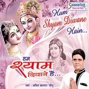 Hum Shyam Diwane Hai Songs