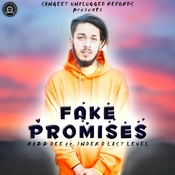 Fake Promises Song