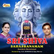 Sri Shiva Dasha Shloka Stuthi MP3 Song Download- Sri Shiva