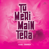 Tu Meri Main Tera Songs
