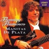 Flaming Flamenco Songs
