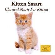 Kitten Smart - Classical Music For Kittens Songs