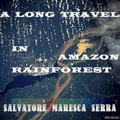 A Long Travel In Amazon Rainforest Song