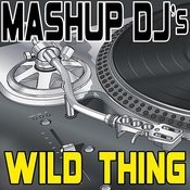 Wild Thing (Remix Tools For Mash-Ups) Songs