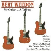 Mr Guitar... A Tribute Songs
