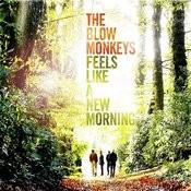 Feels Like A New Morning Songs