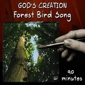 Forest Bird Song (90 Minutes) Songs