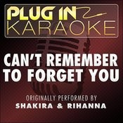 Can't Remember To Forget You (Originally Performed By Shakira & Rihanna) (Karaoke With Backing Vocal Version) Song
