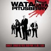 Watagatapitusberry Songs