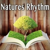 Natures Rhythm Songs