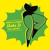 Shake It (The Count & Sinden Remix) Song