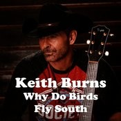 Why Do Birds Fly South Songs